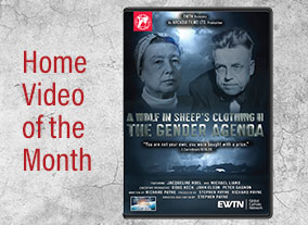 A WOLF IN SHEEP'S CLOTHING - THE GENDER AGENDA - DVD