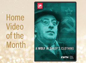 A WOLF IN SHEEP'S CLOTHING - DVD