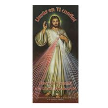 DIVINE MERCY NOVENA IN SPANISH LAMINATED PAMPHLET