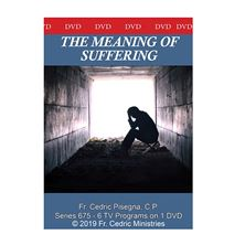 THE MEANING OF SUFFERING - DVD